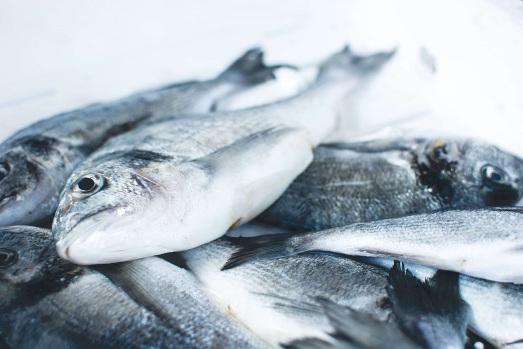 Tradewind Delivers Credit Facility to Icelandic Seafood Exporter